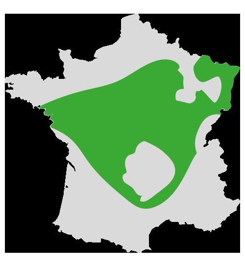 zones intermédiaires couverts végétaux